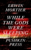 Mortier, Erwin,While the Gods Were Sleeping