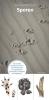 ,Natuurwijzer Sporen - zoekkaart, herkenningskaart