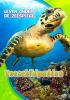Sara  Schuetz ,Zeeschildpadden, Leven onder de Zeespiegel