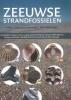 ,Zeeuwse strandfossielen