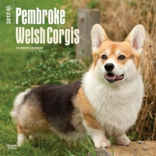 Pembroke Welsh Corgis 2017 Calendar