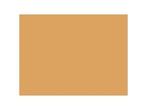 , tekenpapier Folia 50x70cm 130gr pak a 25 vel okergeel