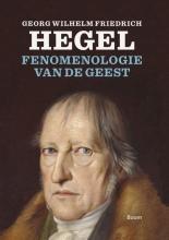 Willem Visser , Fenomenologie van de geest