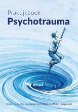 Ankie  Driessen Praktijkboek Psychotrauma