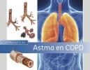 Sebastiaan  Vroegop T.J.  Klemmeier,Zorgatlas Astma en COPD