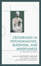 Anthony Molino Crossroads in Psychoanalysis, Buddhism, and Mindfulness