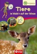 Kanbay, Feryal Naturdetektive - Tiere im Wald + auf der Wiese