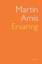 Martin Amis , Ervaring