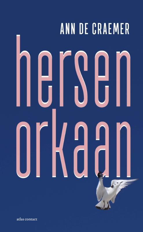 Ann De Craemer,Hersenorkaan
