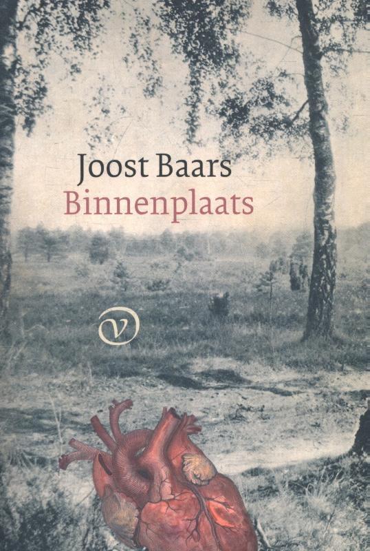 Joost Baars,Binnenplaats