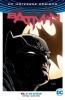 Tom King, I Am Gotham (rebirth)