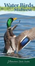 Tekiela, Stan Water Birds of the Midwest