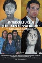 Harold Sarneel , Interculturele jeugd en opvoedhulp