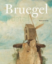 Manfred Sellink , Bruegel in detail