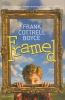 Cottrell Boyce, Frank,Framed