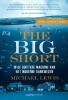 <b>Michael  Lewis</b>,THE BIG SHORT