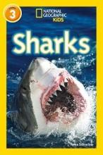 Anne Schreiber Sharks