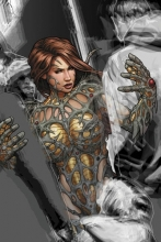 Seeley, Tim Witchblade: Rebirth 2