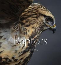 Scott, Traer Raptors