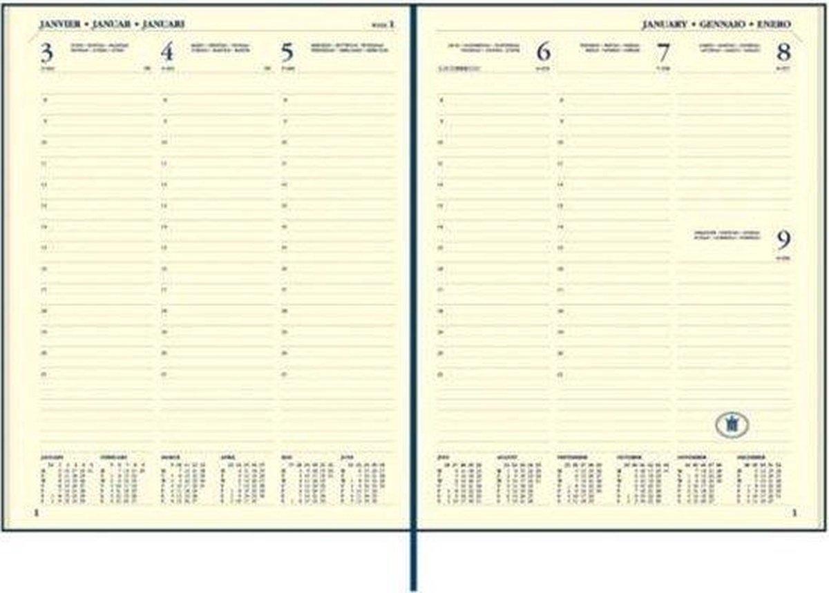 ,Ryam executive agenda 2020-2021 18 maanden 170x220 bruin