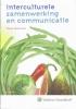 Klaas Schermer, Interculturele samenwerking en communicatie