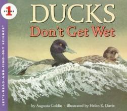 Goldin, Augusta Ducks Don`t Get Wet
