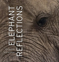Dale Peterson Elephant Reflections