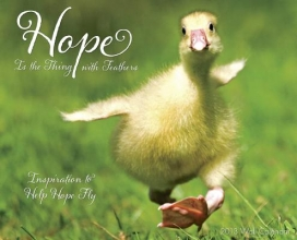 Hope Is the Thing with Feathers Wall Calendar