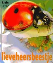 Lynette  Evans Lieveheersbeestje