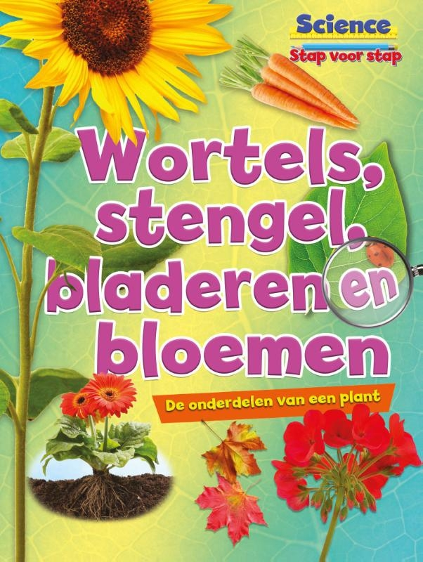 Ruth Owen,Wortels, stengels, bladeren en bloemen