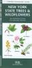 Kavanagh, James,New York State Trees & Wildflowers