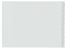 ,tabblad Kangaro A3 venster PP 120mµ grijs 4-gaats 10-delig  dwars EB