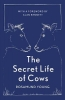 Young Rosamund, Secret Life of Cows