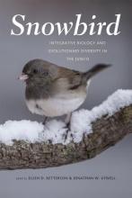 Ellen Ketterson,   Jonathan Atwell Snowbird