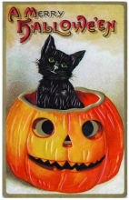 Black Cat Emerging from Jack-O-Lantern Halloween Greeting Cards (6 Cards Individually Bagged WEnvelopes and Header) [With Envelope]