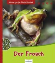 Starosta, Paul Der Frosch