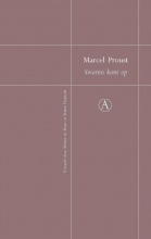 Marcel  Proust Swanns kant op - Perpetua