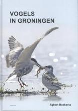 Egbert Boekema , Vogels in Groningen