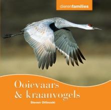 Otfinoski, Steven Ooievaars & kraanvogels