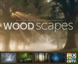 Daniël Laan Ellen Borggreve, Woodscapes