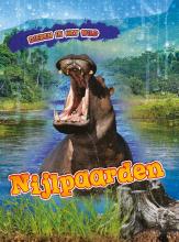 Rachel Koestler-Grack , Nijlpaarden