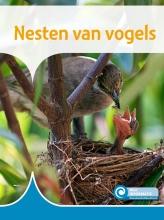 Bouwina de Jong , Nesten van vogels