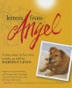 Levin, Martin,Letters from Angel