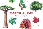 ,Match a Leaf A Tree Memory Game:A Tree Memory Game