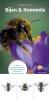 Maureen  Kemperink,Minigids Bijen en Hommels