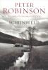 Richard Robinson, Schijnbeeld