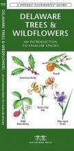 Kavanagh, James Delaware Trees & Wildflowers
