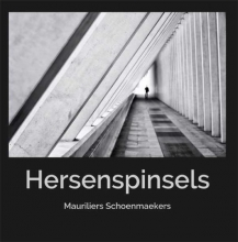 Mauriel Schoenmaekers , Hersenspinsels