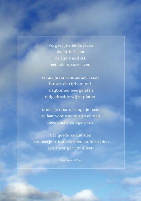 ,Raamgedicht Plint Hermis `Vergeet je niet te leven` incl. set zuignapjes 2001/01C1