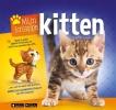 Kay  Woodward,Mijn knappe kitten